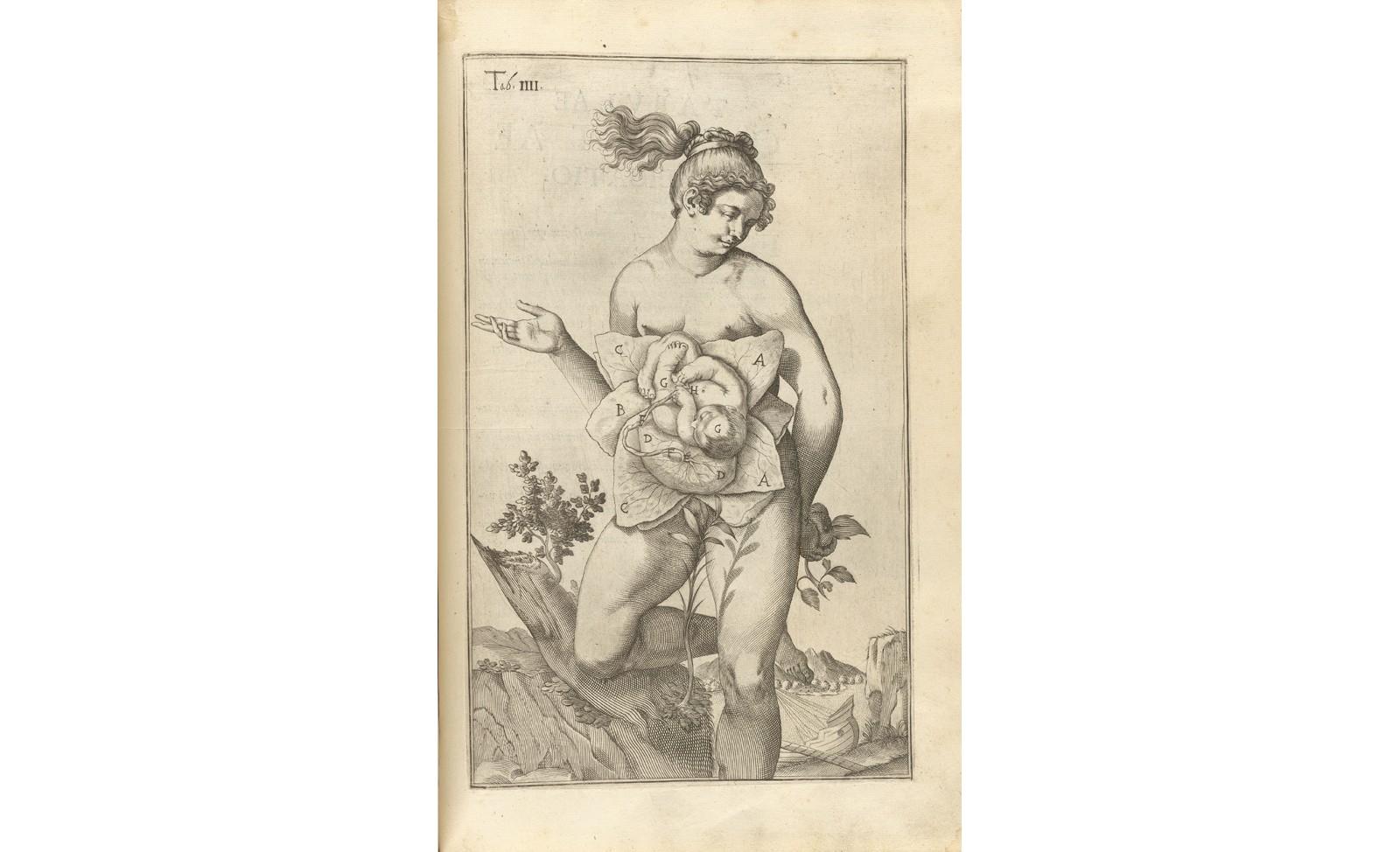 ANATOMIEN – VON VESALIUS ZUM VIRTUELLEN KÖRPER - Kulturgeschichte